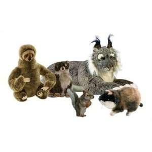 Wilderness Stuffed Animal Collection III Toys & Games