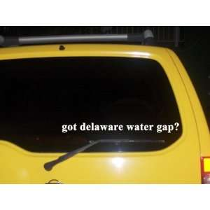 got delaware water gap? Funny decal sticker Brand New
