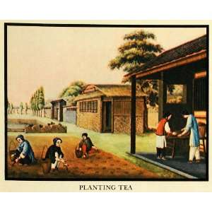 Drink Chinese Farming Farmer   Original Color Print