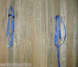 New Blue Nylon Headstall and Reins Set Horse Saddle Tack